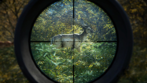 4295-thehunter-call-of-the-wild-0