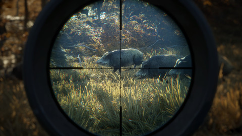4295-thehunter-call-of-the-wild-16