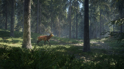4295-thehunter-call-of-the-wild-5