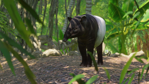 6341-planet-zoo-southeast-asia-animal-pack-gallery-2_1